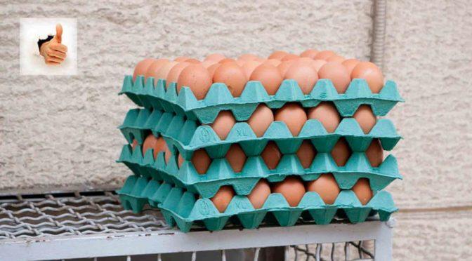 J'ai réduit mon cholestérol en mangeant des œufs tous les matins
